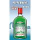 Flasque de Peppermint vert -273°